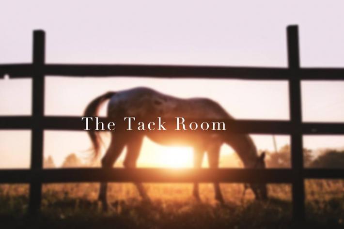 A travers des vidéos thématiques, The Tack Room souhaite aider les cavaliers. (Crédit : The Tack Room)