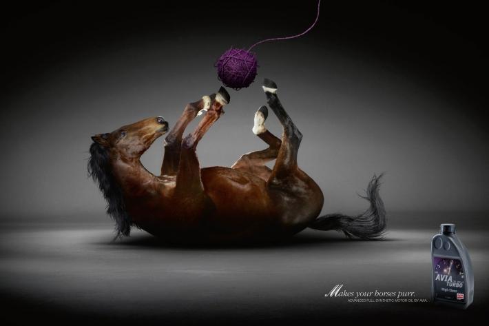 Dossier : le cheval dans la publicité