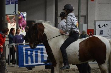 L'élevage Fra Brunni a fait tester des poneys aux visiteurs. (Crédit : Gaëlle Colinet)