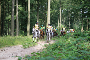 (Photo : Brussels Equestrian Endurance Masters)