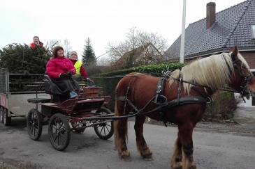 Les chevaux sont valorisés dans le ramassage. (Crédit : Page Facebook OT Soignies)