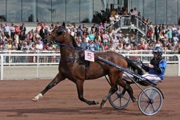 Timoko (Crédit photo : www.lamia.biz)