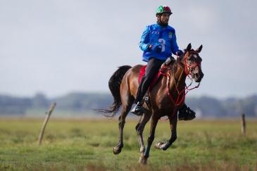 Le Sheikh Hamdan bin Mohamed al Maktoum, champion du monde d'endurance, pourra reprendre la compétition grâce à la levée de la suspension de sa Fédération nationale (Crédit photo : Christophe Bortels)