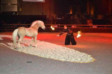 Magic Dream et Cathy Mittig pour un show en liberté enflammé (Credit photo : Axelle Verstraeten)