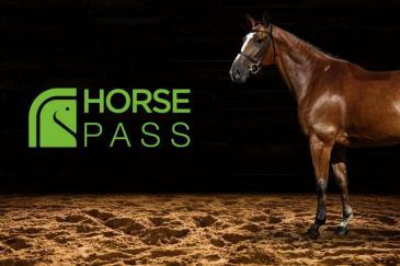 (Photo : Horse-Pass)