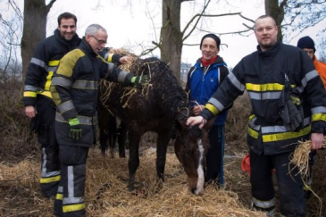 Le miraculé entouré des pompiers. (Crédit : Mozkrito)