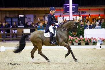 Spencer Wilton et Super Nova sur le CDI 4* de Lier (Crédit photo: CDI Lier/Digishots)
