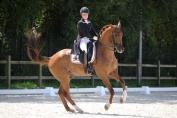 Charlotte Defalque et son cheval Botticelli ont remporté les Jeunes Cavaliers par équipe le dimanche (Crédit photo: Nathalie Geerlandt)