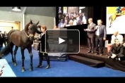 Embedded thumbnail for Conférence de presse des Longines Masters