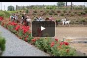 Embedded thumbnail for Stage d'été, le meilleur moyen de découvrir l'équitation ou de progresser