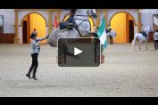 Embedded thumbnail for Visite exceptionnelle de l'Ecole Royale Andalouse d'Art Equestre