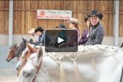 Embedded thumbnail for Equitation western et présentation du Jumping International de Liège