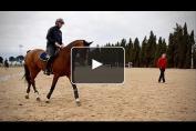Embedded thumbnail for Le dressage, passage obligé pour les cavaliers d'obstacles