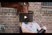 Embedded thumbnail for Constant Van Paesschen, le renouveau du cavalier prodige